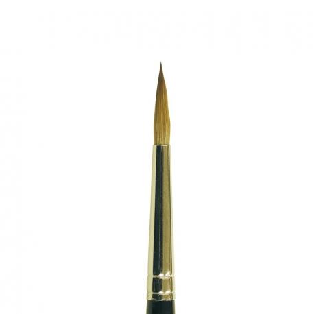 Brush Golden Apprenti Kolinsky