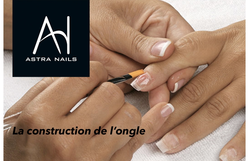 L' application du système ou la construction de l'ongle